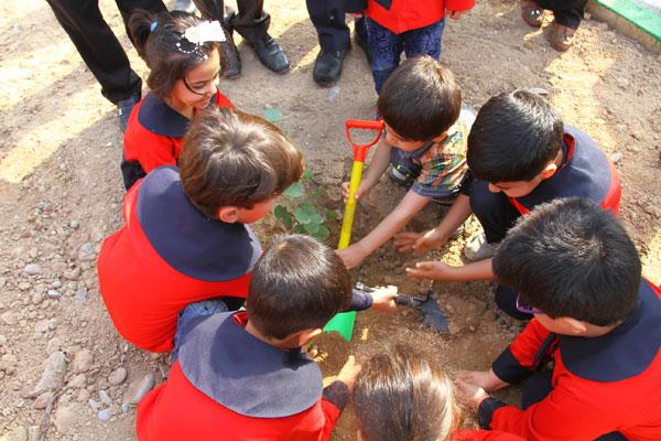 عکس/ برگزاری آئین روز درختکاری در دزفول